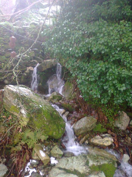 Της Άρνης το νερό - Η πραγματική ιστορία